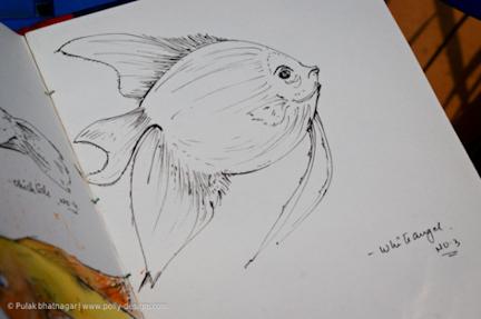 Sketch-by-Pulak-Bhatnagar-34-Resized