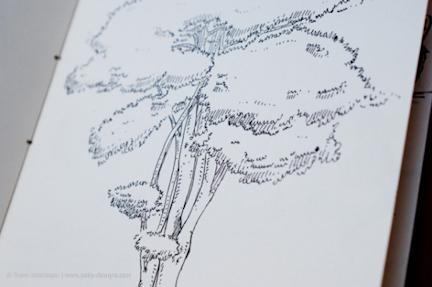 Sketch-by-Pulak-Bhatnagar-54-Resized