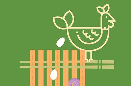 Chi Noodle Point Illustrations